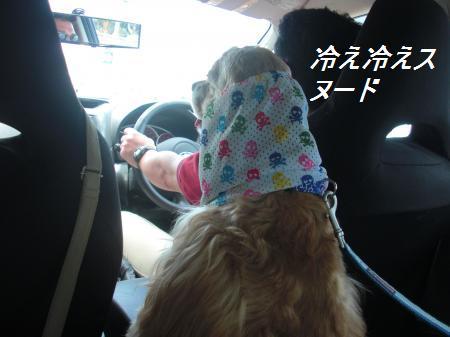 003_convert_20110712223947.jpg
