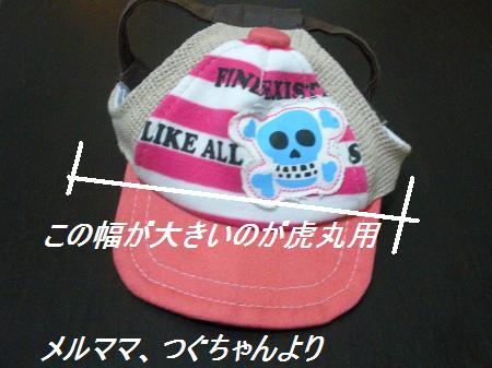006_convert_20110712224525.jpg