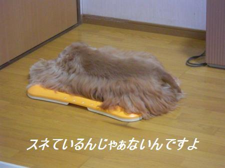 011_convert_20110920195923.jpg