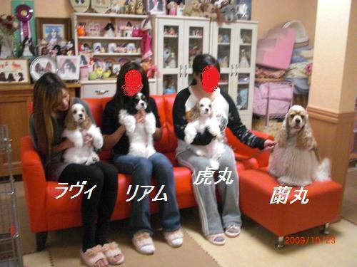016_convert_20091024203558.jpg