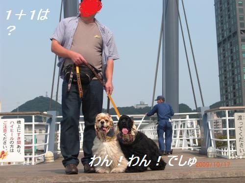 018_convert_20091022190559.jpg