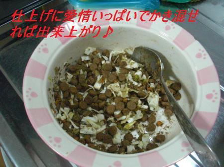 021_convert_20110920200321.jpg