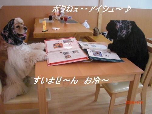 028_convert_20090904233355.jpg
