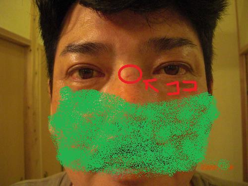 031_convert_20090815112530.jpg