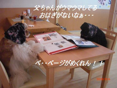 031_convert_20090904233925.jpg