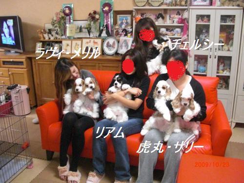 031_convert_20091024203918.jpg