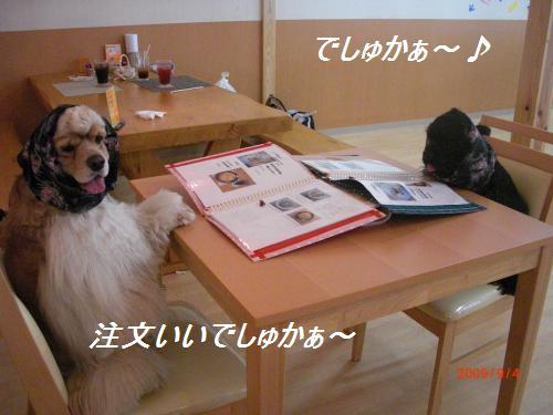 032_convert_20090904234558.jpg