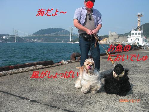 064_convert_20091021225633.jpg