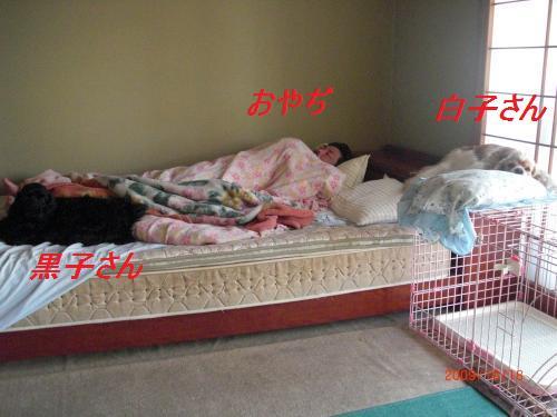 131_convert_20091021234129.jpg