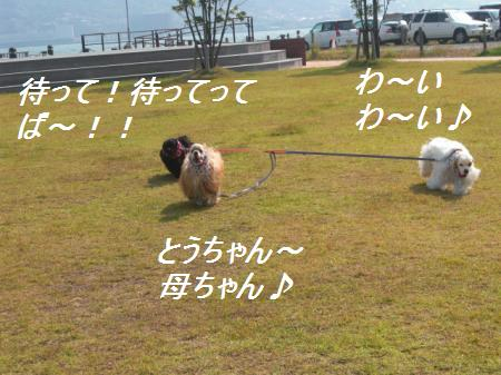 198_convert_20111010000857.jpg