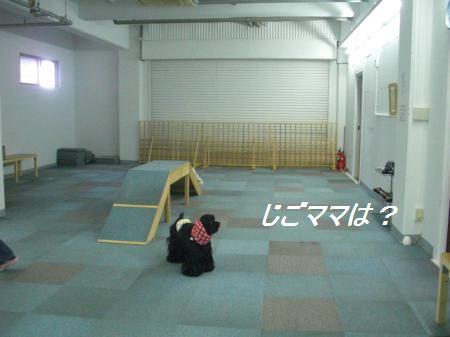 211_convert_20111010001055.jpg