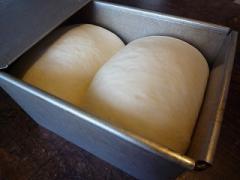食パンプルマン090920-2