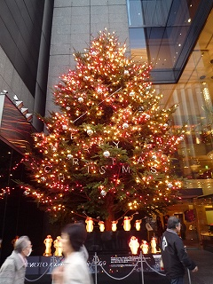ミキモトクリスマスイルミネーション091216
