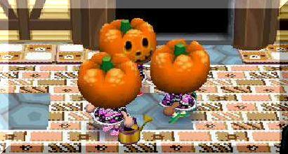 かぼちゃのひそひそ話