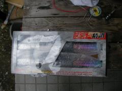 SANY0024_20100209072539.jpg