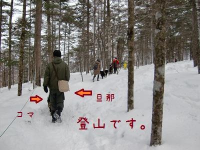 富士見パノラマ5
