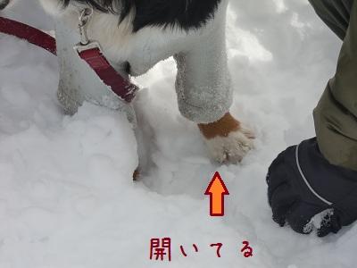 富士見パノラマ4