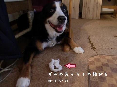コマすず合戦7