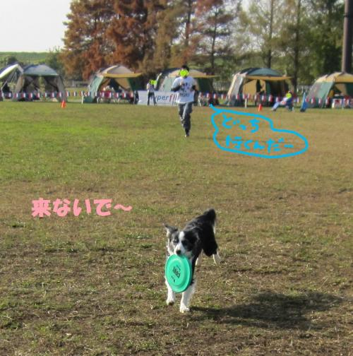 IMG_2204_convert_20101121130839.jpg