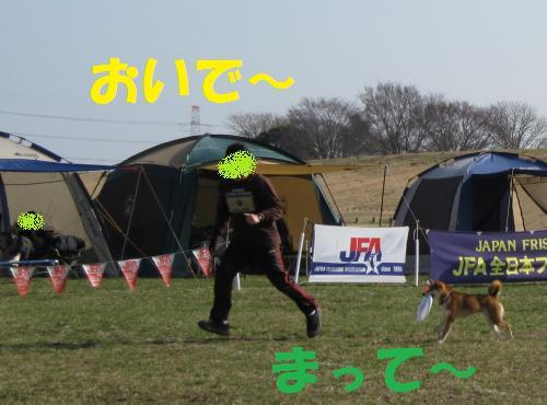 IMG_2832_convert_20110227185452.jpg