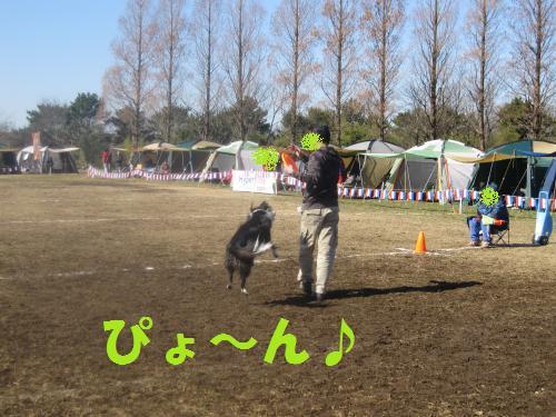 IMG_2912_convert_20110306073847.jpg