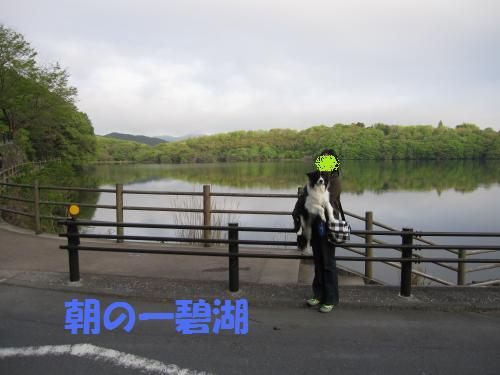 IMG_3164_convert_20110501082242.jpg