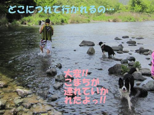 IMG_3501_convert_20110515205007.jpg