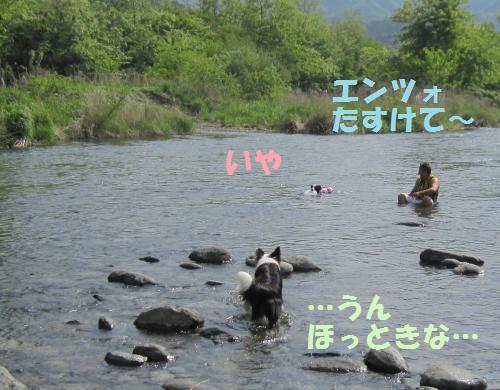 IMG_3544_convert_20110515205802.jpg