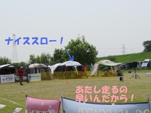IMG_3587_convert_20110521203626.jpg