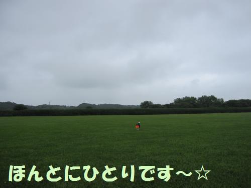 IMG_3736_convert_20110619185019.jpg