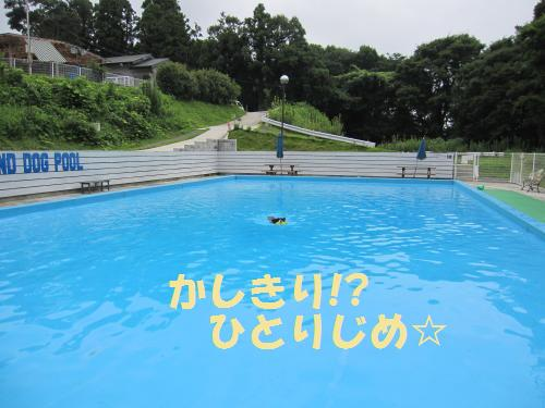 IMG_4063_convert_20110806215246.jpg