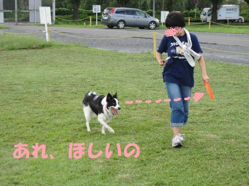IMG_4674_convert_20110919101707.jpg