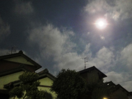 20110715松半21