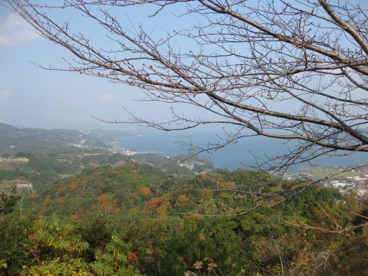 八人ヶ岳公園