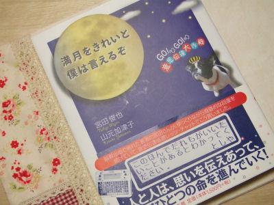 【宮ぷーと】満月をきれいと