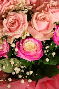 【幸せのバラ】アップ
