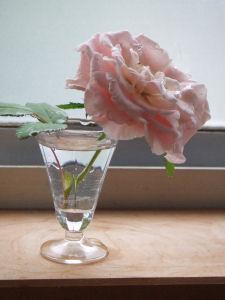 【幸せのバラ】窓辺へ