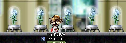 バラを咲かせましょう♪