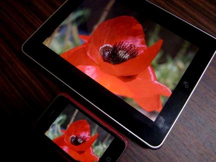http://blog-imgs-34.fc2.com/k/o/s/kosstyle/CIMG3221.jpg