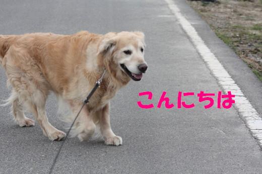 bu-75630001.jpg