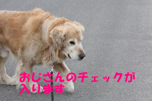 bu-75700001.jpg
