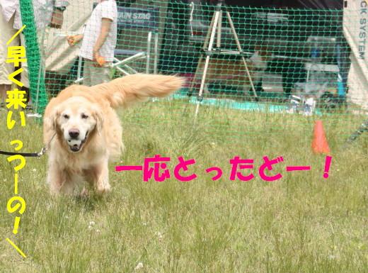 bu-76450001.jpg