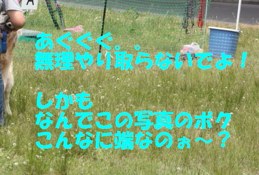 bu-76470001.jpg
