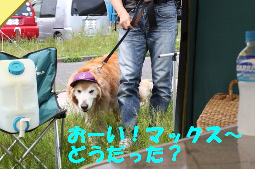 bu-76600001.jpg