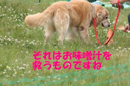 bu-76840001.jpg