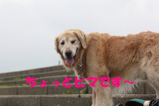 bu-78950001.jpg