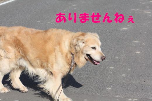 bu-79780001.jpg