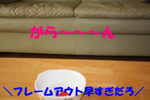 bu-80710001.jpg