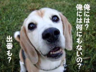 お買い物 7 俺には!?