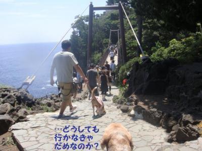 2日目 7 吊り橋
